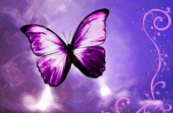 Elimine seus bloqueios com o Reiki e a Chama Violeta